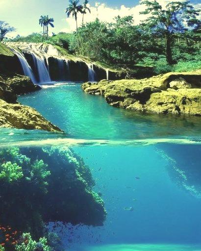 Split-View Waterfall, Jamaica