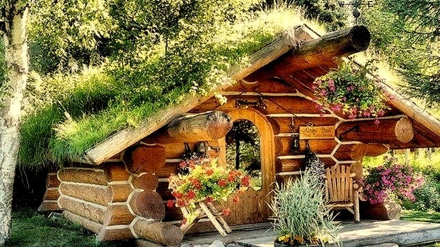 Forest House, Norway