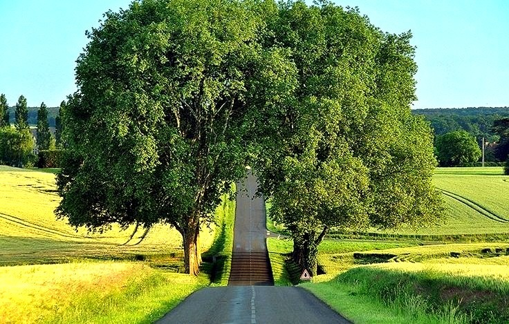 Country Road, Loire, France