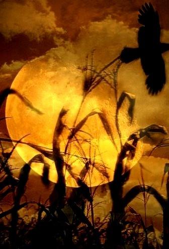 Raven's Moon, Scotland
