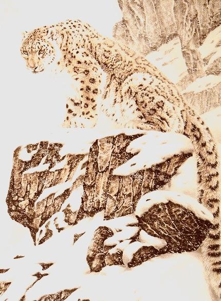 Snow Leopard, China