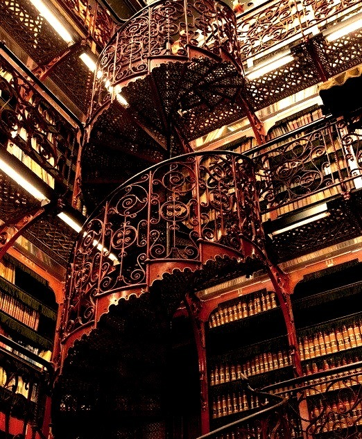 Handelingenkamer Library, The Hague, Netherland