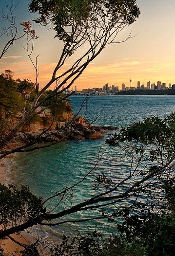 Sydney skyline in the distance seen fron Lady Bay, Australia