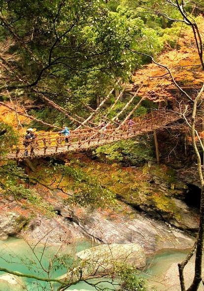 Vine bridge in Iya Valley, Shikoku, Japan