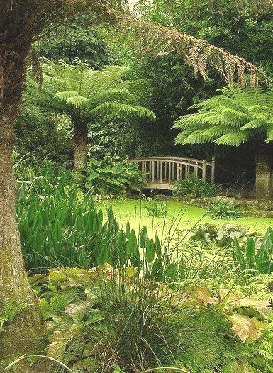 Trengwainton Gardens in Cornwall / England